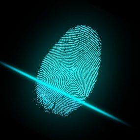 sistema de segurança de biometria